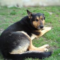 Aliii's Photo